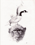 Fauna Drawings Originals - Doodle #10 by Ramon  Castellanos