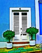 Screen Doors Acrylic Prints - Door 61 Acrylic Print by Perry Webster