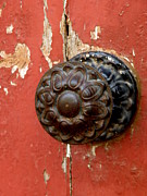 Lainie Wrightson Posters - Door Knob on Red Door Poster by Lainie Wrightson