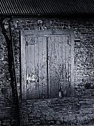 Irish Art - Door to Nowhere Blarney Ireland by Teresa Mucha