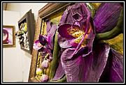 Nelbert  Flores - Door to Orchids - view 3