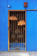 Grill Gate Photos - Door with Metal Bars by Susan Isakson