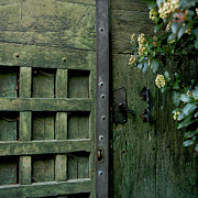 Textured Paint Photo Prints - Door with padlock Print by Bernard Jaubert
