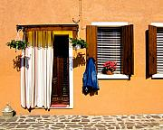Flowerpot Posters - Doors and Windows III Burano Italy Poster by Carl Jackson