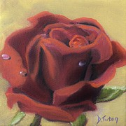 Blooming Paintings - Doriss Rose by Donna Tuten