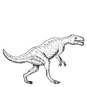 Likeness Drawings Prints - Dorkosaurus - Dinosaur Print by Karl Addison