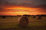Field. Cloud Prints - Dornock Sunrise Print by Brian Kerr Photography