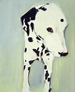 White Dog Framed Prints - Dorothy 2 Framed Print by Sally Muir