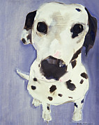 Dalmatian Dog Prints - Dorothy Print by Sally Muir