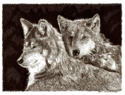 Wolves Drawings - Dos Lobos y Amigas by Jack Pumphrey