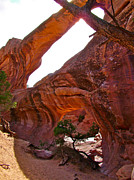 Double O Arch Posters - Double O Arch near Devils Garden Trail Poster by Ruth Hager