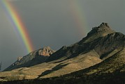 Texas Parks Posters - Double Rainbow Over The Chisos Poster by Medford Taylor