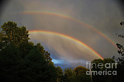 4th July Prints - Double Rainbow Print by Science Source
