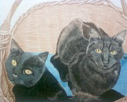 Cats Drawings Originals - Double Trouble by Anita Putman