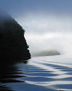 Doubtful Framed Prints - Doubtful Sound 2 Framed Print by Mollie Jax