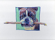 Fetch Framed Prints - Dougalls Stick Framed Print by Kimberly Santini