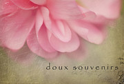 Textured Floral Framed Prints - Doux Souvenirs Framed Print by Reflective Moments  Photography and Digital Art Images