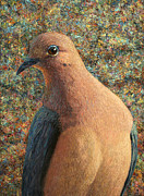 Palette Knife Texture Posters - Dove Poster by James W Johnson