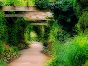 Down The Garden Path Print by Blair Wainman