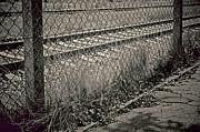 Fence Posts Photos - Down The Line by Odd Jeppesen