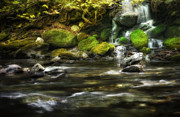 Cascading Water Prints - Down the river Print by Bill  Wakeley