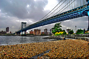 York Beach Framed Prints - Down Under Manhattan Bridge Overpass Framed Print by Randy Aveille