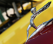 Hood Ornament Photo Prints - Downhill Racer Print by Rebecca Cozart