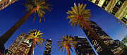 Down Town Los Angeles Photos - Downtown LA by James Callaghan
