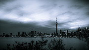 All - Downtown Toronto at Night - Monochromatic by Anthony Rego