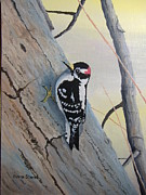 Woodpecker Paintings - Downy Woodpecker by Norm Starks