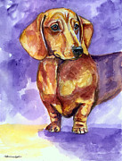 Dachshund Framed Prints - Doxie - Dachshund Dog Framed Print by Lyn Cook