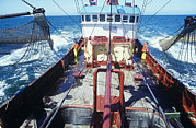 Fishing Trawler Framed Prints - Dragnet Fishing Framed Print by Dirk Wiersma
