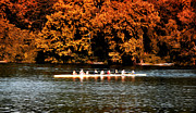 Rowing Crew Posters - Dragon Boat on the Schuylkill Poster by Bill Cannon