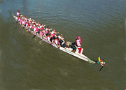 Ohio River Painting Posters - Dragon Boat Pink Poster by Mitzi Lai