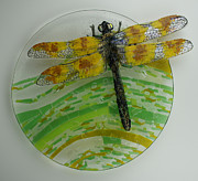 Circle Glass Art Originals - Dragon Fly Away by Michelle Rial