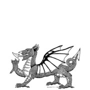 Wings Drawings - Dragon by Karl Addison