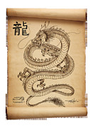 Etc. Drawings - Dragon Scroll by Rommel Pascual