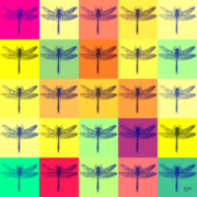 Popart . Framed Prints - Dragonfly 53 Framed Print by Flo Ryan