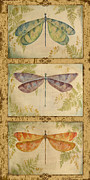 Jean Painting Framed Prints - Dragonfly Trio-3 Framed Print by Jean PLout