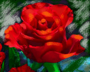 Dramatic Mixed Media Originals - Dramatic Red Rose by Suzanne Cerny