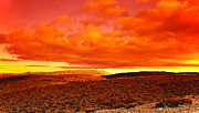 Sahara Sunlight Posters - Dramatic red sunset at desert Poster by Anna Omelchenko