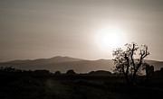 Milos Dacic Photo Metal Prints - Dramatic sunset in Serbia Metal Print by Milos Dacic