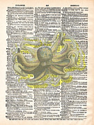 Octopus Mixed Media Framed Prints - Dreadful Octopus 4 Framed Print by Marcus  Jules