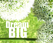 Vivacity Posters - Dream Big Poster by Lj Lambert