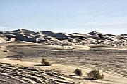 Sand Dunes Pyrography Metal Prints - Dream Dunes 0175 Metal Print by Sharon Broucek