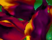 Dream Gardens - Tulip Petals - Shimmering Brights Print by Mathilde Vhargon
