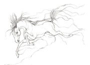 Horses Drawings Metal Prints - Dream Horse Metal Print by Angel  Tarantella