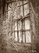 Abandoned Houses Prints - Dream Lost Print by Leslie Revels Andrews