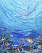 Dolphin Art Paintings - Dream Reef by Danielle  Perry
