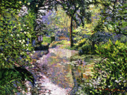 Blooming Paintings - Dream Reflections by David Lloyd Glover